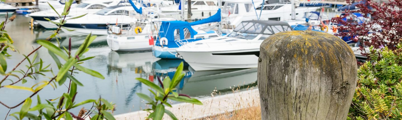 Deganwy Marina 49